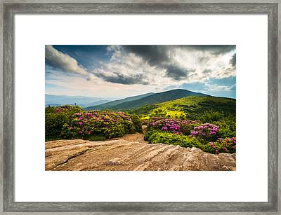 North Carolina Blue Ridge Mountains Landscape Appalachian Trail Framed Print by Dave Allen