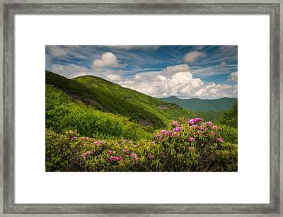 North Carolina Blue Ridge Parkway Craggy Gardens Framed Print by Dave Allen