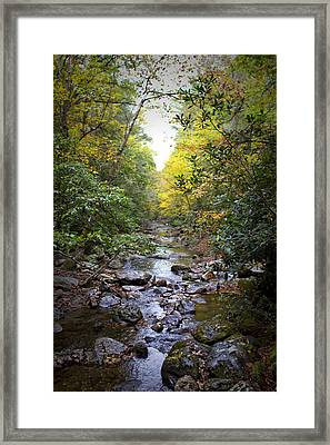 North Carolina Typical Framed Print