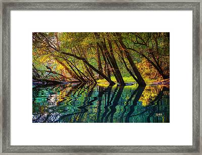 North Chick Impression Framed Print