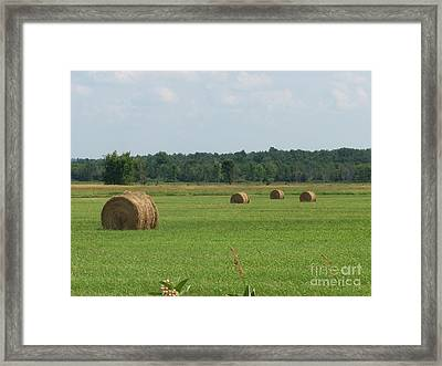 North Country Haystacks Framed Print by Kevin Croitz