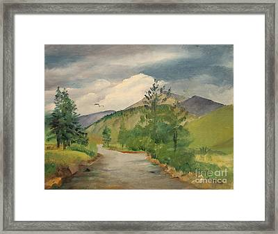 North Fork Of The South Platte - Shawnee Co  1980's Framed Print