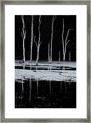 North Pond Twilight Framed Print
