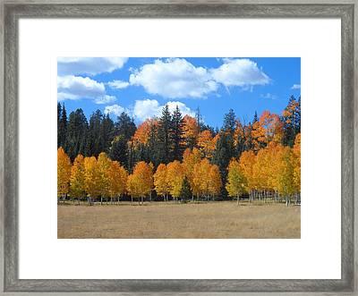 North Rim Fall Framed Print