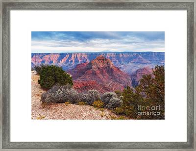North Rim Grand Canyon Arizona Desert Southwest Solitude At Cape Royal Framed Print by Silvio Ligutti
