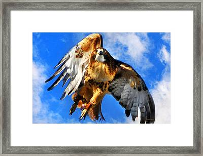 North Wind Framed Print by Christina Rollo