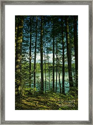 North Woods Lake Framed Print by Birgit Tyrrell