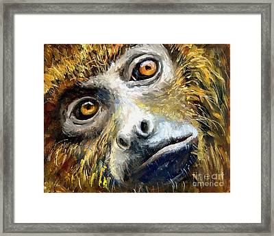 Northern Brown Howler Monkey Framed Print