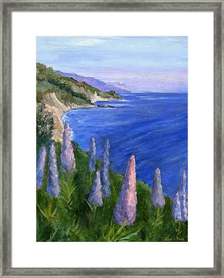 Northern California Cliffs Framed Print