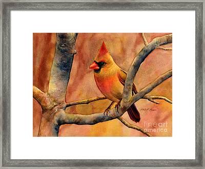 Northern Cardinal II Framed Print by Hailey E Herrera