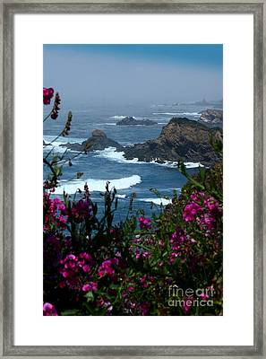 Northern Coast Beauty Framed Print
