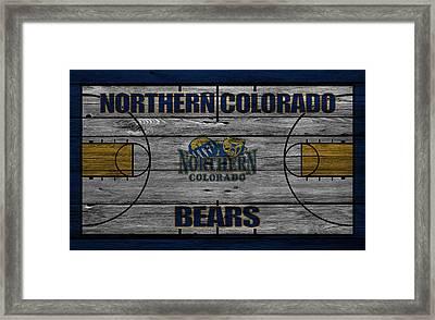 Northern Colorado Bears Framed Print by Joe Hamilton
