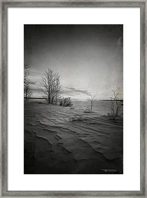 Northern Desert Framed Print by Dustin Abbott