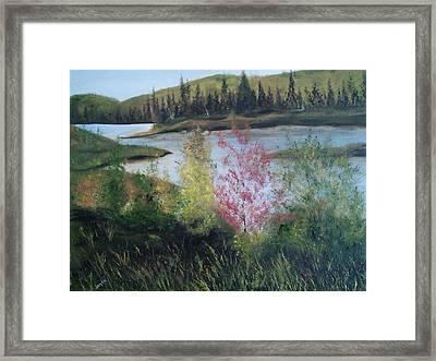 Northern Lake 2 Framed Print by Joyce Reid