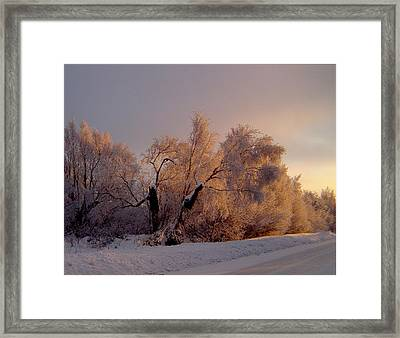 Framed Print featuring the photograph Northern Light by Jeremy Rhoades