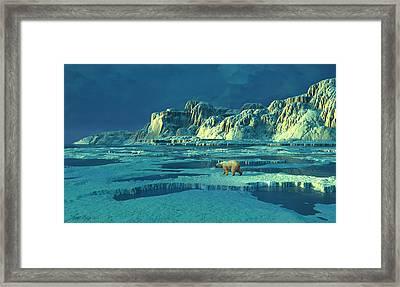 Northern Lights Framed Print by Dieter Carlton