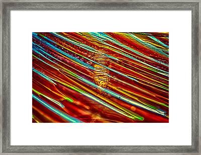 Northern Lights Framed Print by Omaste Witkowski