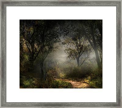 Northern Oz #8 Framed Print