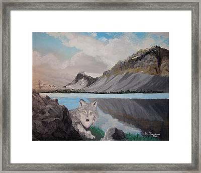 Northland Wilds Framed Print