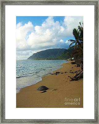 Northshore Beach Framed Print