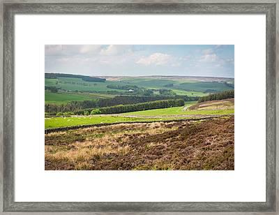 Northumberland Landscape Framed Print by Tom Gowanlock