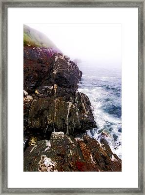 Northwest Coast-1 Framed Print