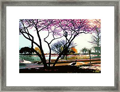 Northwestern U. Campus Framed Print