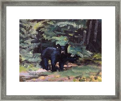 Northwoods Visitor Framed Print by Spencer Meagher