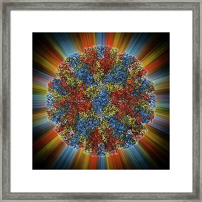 Norwalk Virus Capsid Framed Print by Laguna Design
