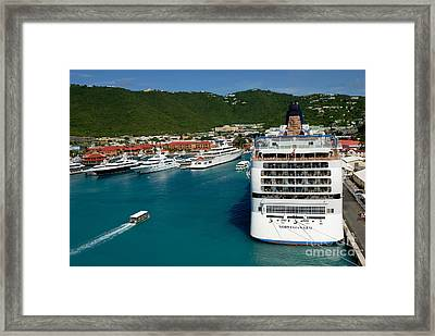 Norwegian Gem At St Thomas Usvi Framed Print by Amy Cicconi