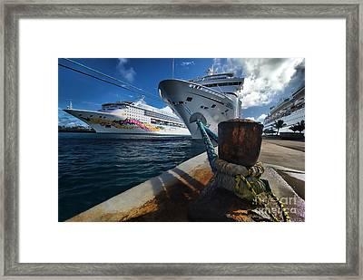 Norwegian Sky Carnival Sensation And Royal Caribbean Majesty Framed Print by Amy Cicconi