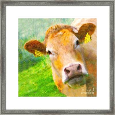 Nosey Cow Framed Print by Jo Collins