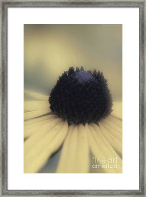 Framed Print featuring the photograph Nostalgia by Mary Lou Chmura