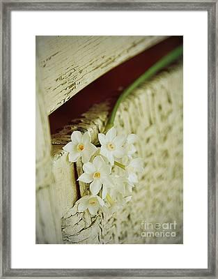 Nostalgic Paper Whites Framed Print by Carla Parris