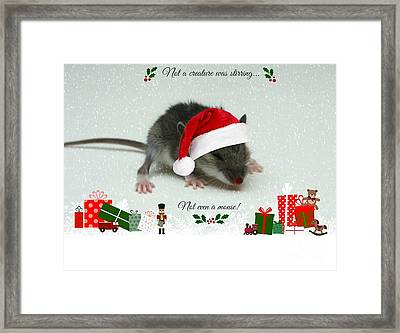 Not A Creature Was Stirring Framed Print