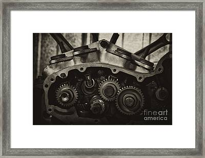 Not Done Yet  Framed Print by Wilma  Birdwell