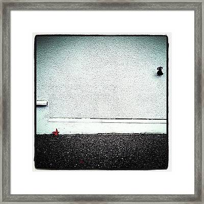 Not Lonely Framed Print by CML Brown