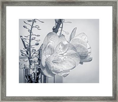 Not Quite Black And White Framed Print by Len Romanick