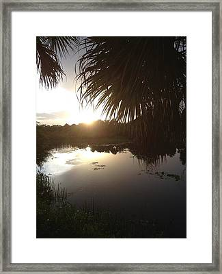 Not Quite Black And White - Sunset Framed Print by K Simmons Luna