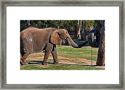 Not Snack There Framed Print