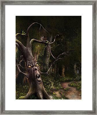 Nothern Oz #45 Framed Print