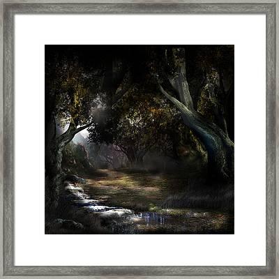 Nothern Oz #5 Framed Print