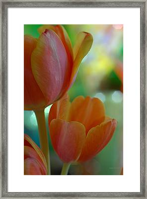 Nothing As Sweet As Your Tulips Framed Print