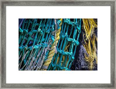 Nothing But Net Framed Print