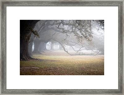 Nothing Gold Can Stay Framed Print