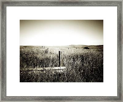 Nothing Here But Us Fence Posts Framed Print by Terry Eve Tanner