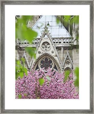 Notre Dame Cathedral, Paris, France Framed Print
