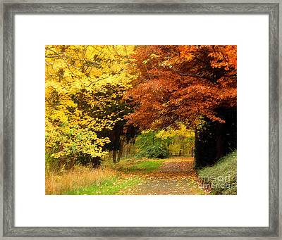 Nov.12-27 Framed Print by Shasta Eone
