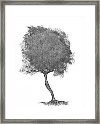 November 2011 Framed Print