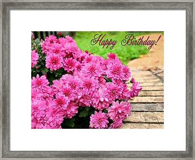 November Birthday Framed Print by Kristin Elmquist
